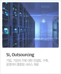 SI, Outsourcing